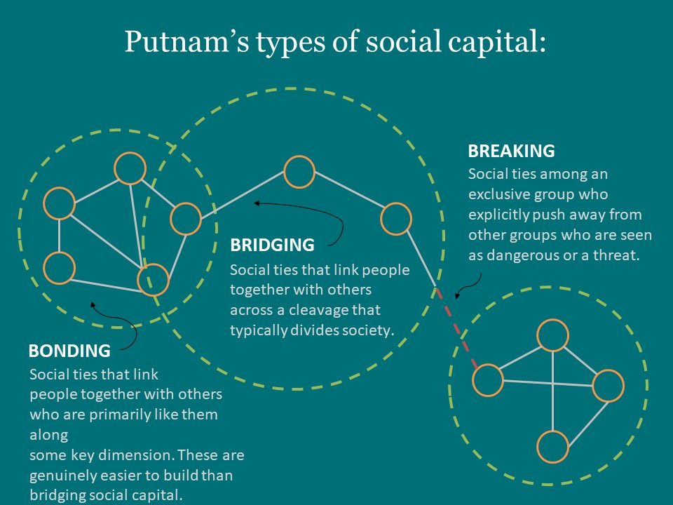 Infographics On Social Capital Haas Institute